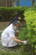 严抓环境卫生|医院志愿者开展清洁卫生大扫除活动